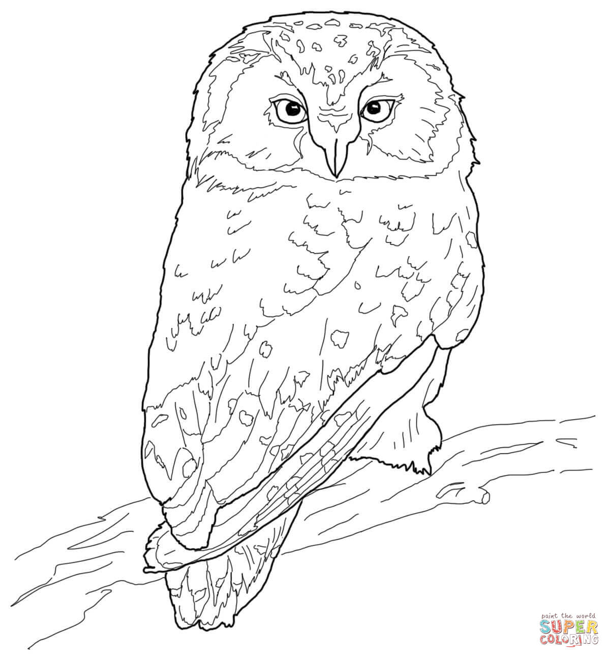 Flying Owl Coloring Pages Coloring