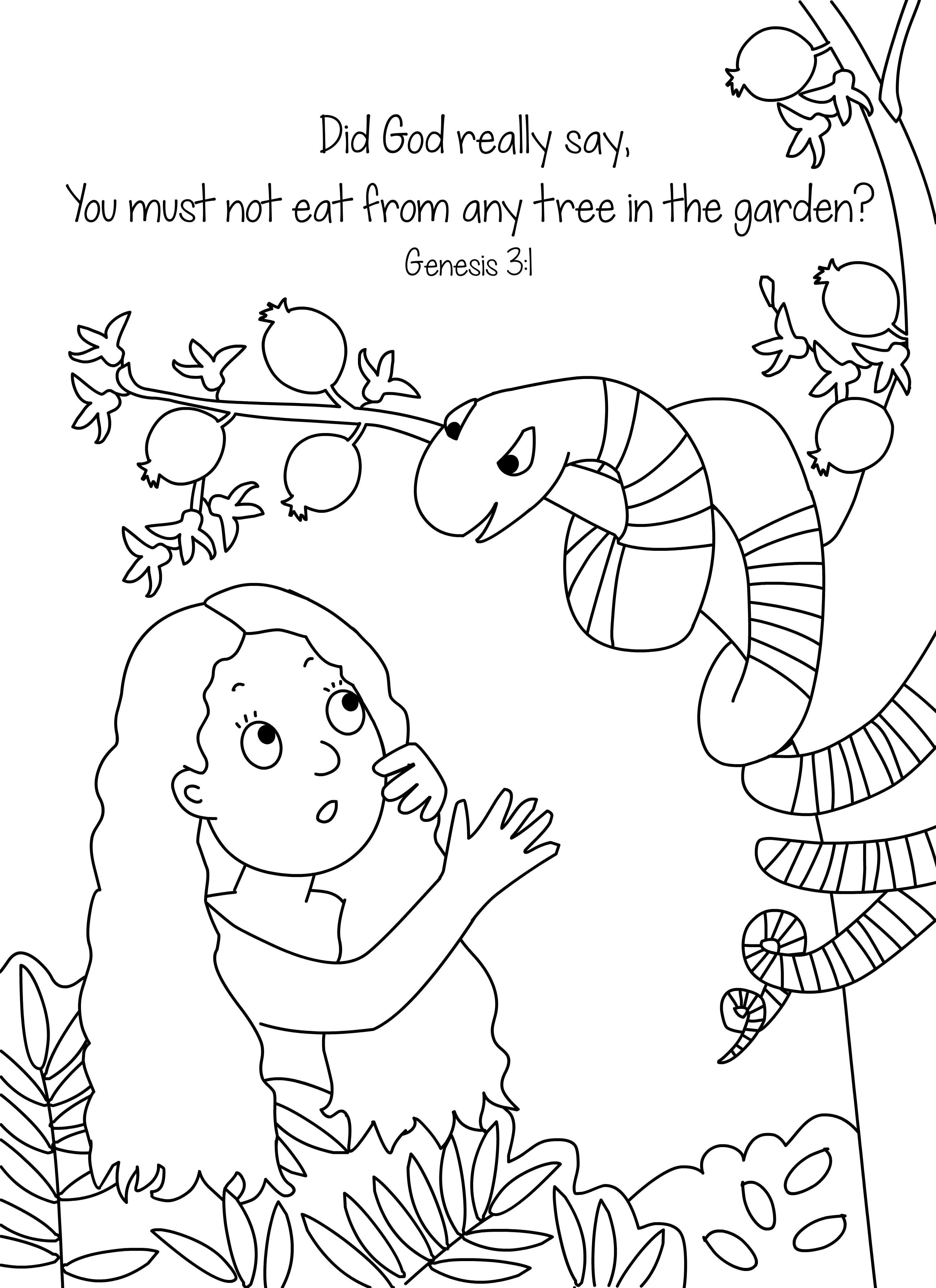 Bible Coloring Pages Creation