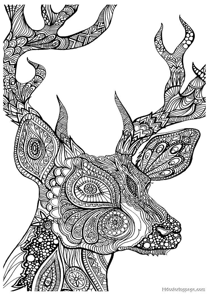 - Advanced Coloring Pages Of Animals - Coloring Home