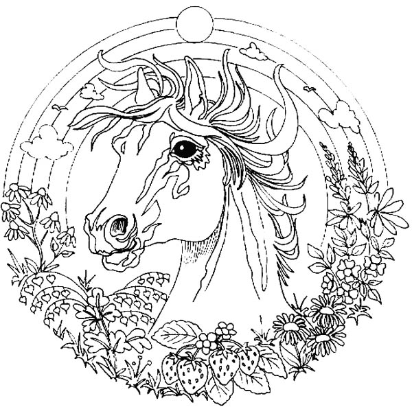 Amazing Animal Horse Mandala Coloring Pages Batch Coloring