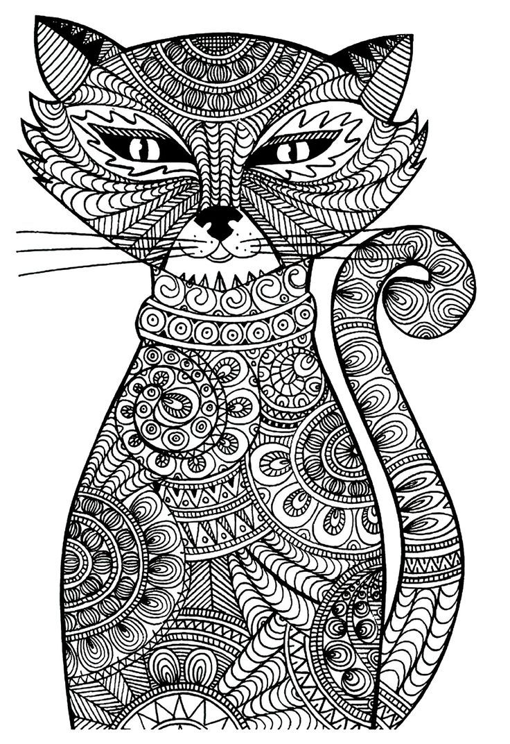 Colouring in sheet adults - Free Cat Coloring Page Picture Sheet Voteforverde Com