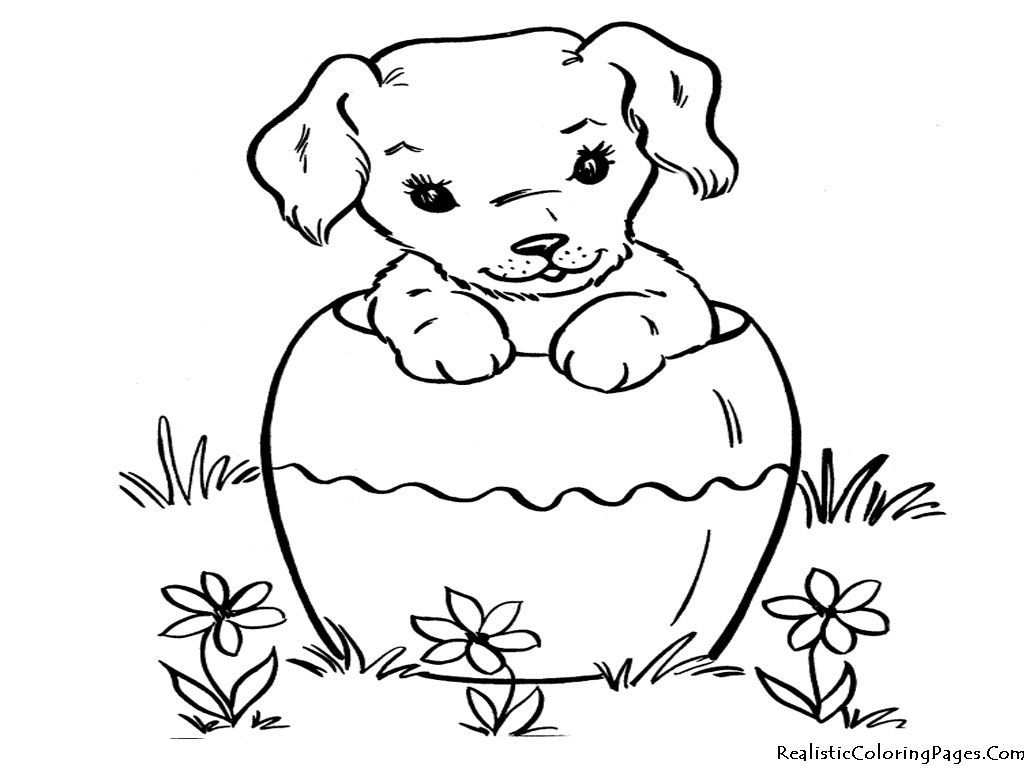 printable pug coloring pages coloring home