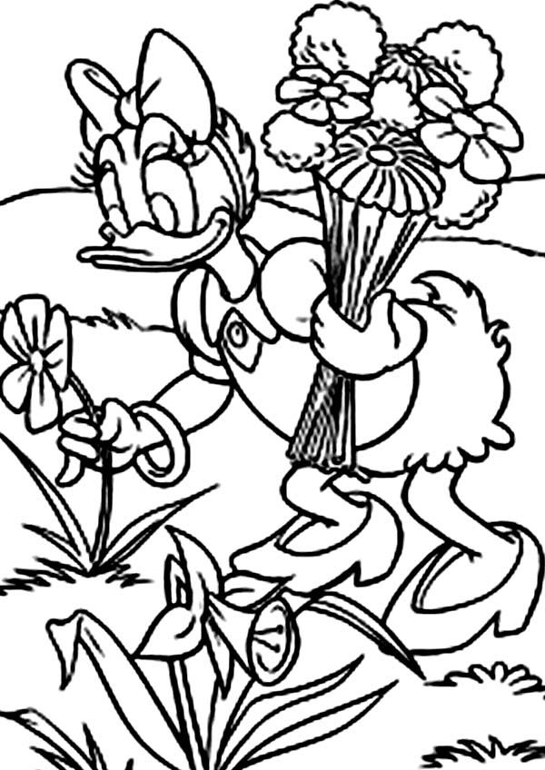 Duck Holding Umbrella Coloring Page