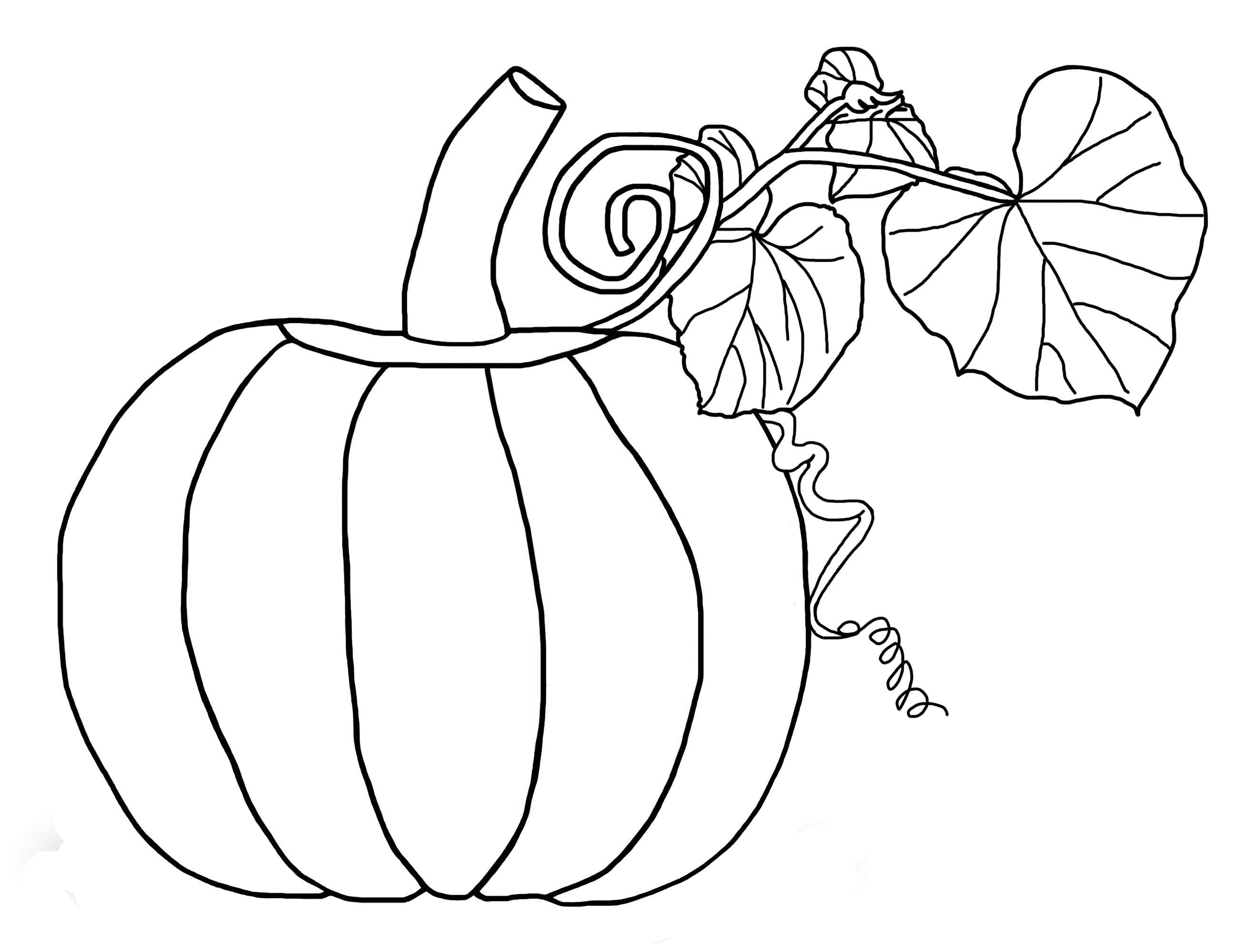 blank pumpkin template coloring home Blank Pumpkin Template  Blank Pumpkin Coloring Sheet