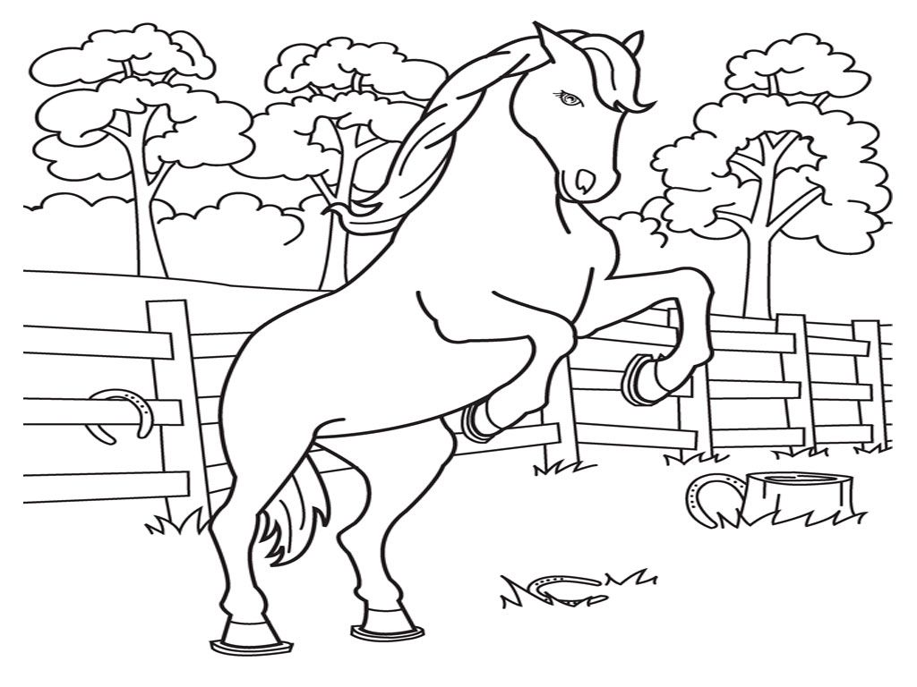 Coloring Pages Graders Home