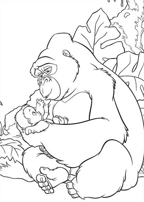 Cute Gorilla Coloring Pages - Coloring Home