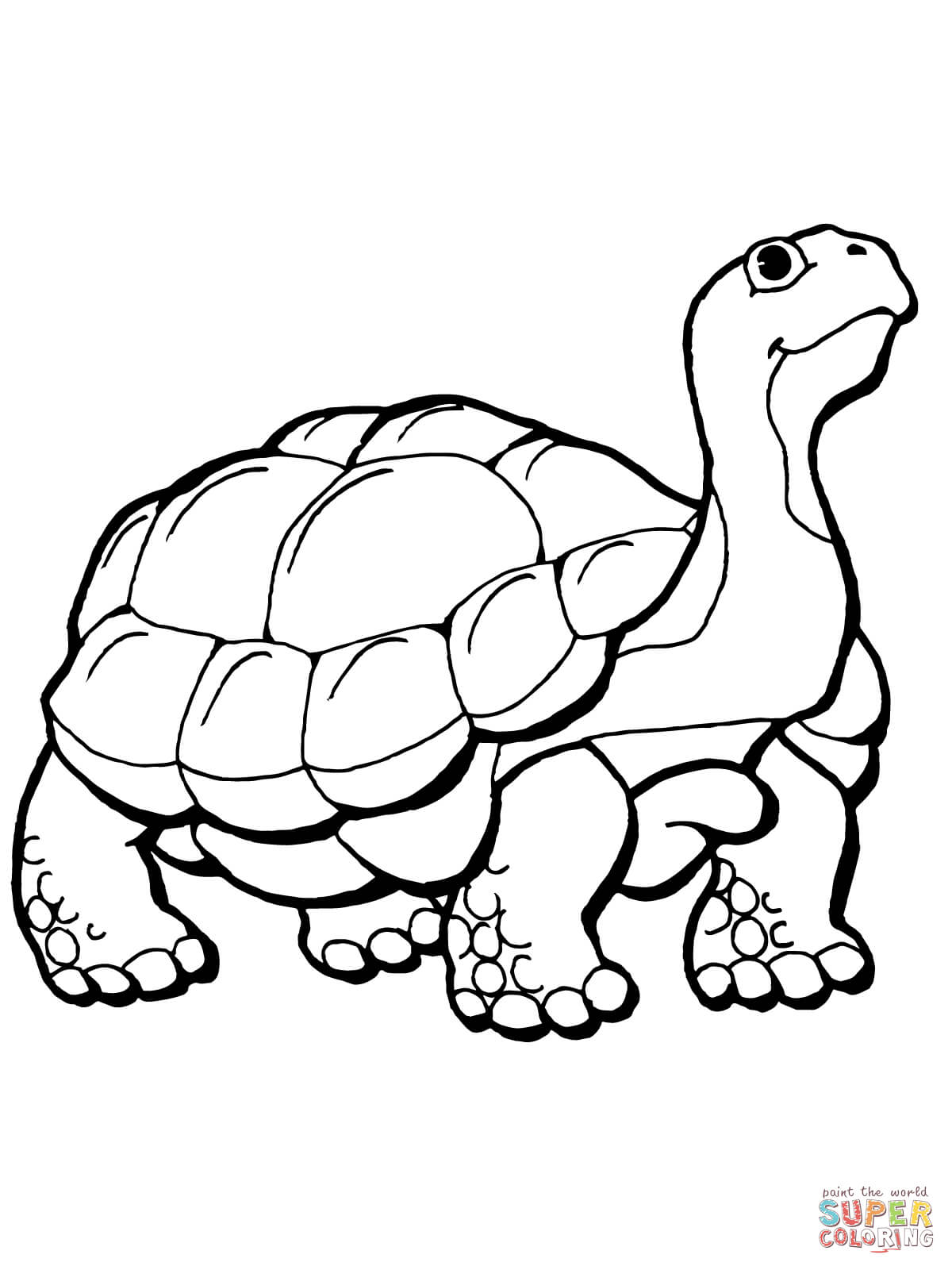 Uncategorized Tortoise And The Hare Coloring Page tortoise coloring pages free home pages