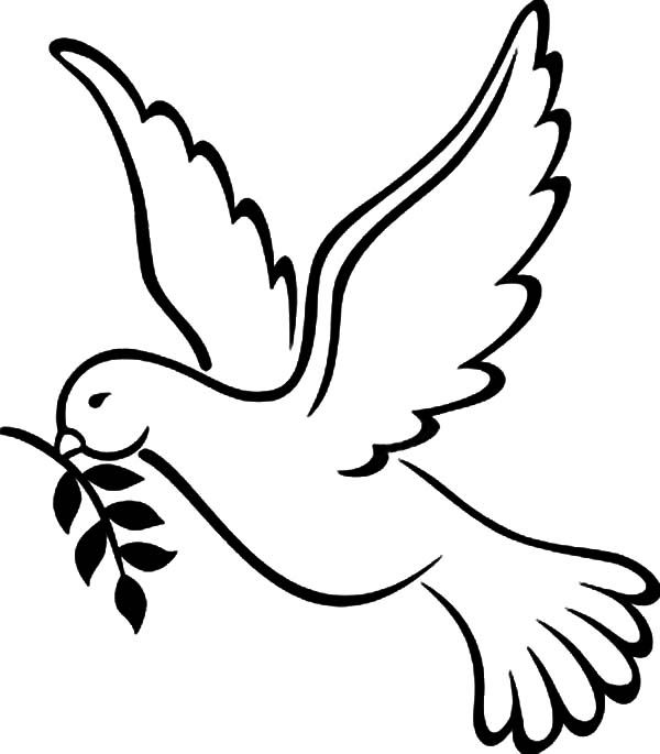Free Peace Dove Coloring Pages Pages Coloring Home