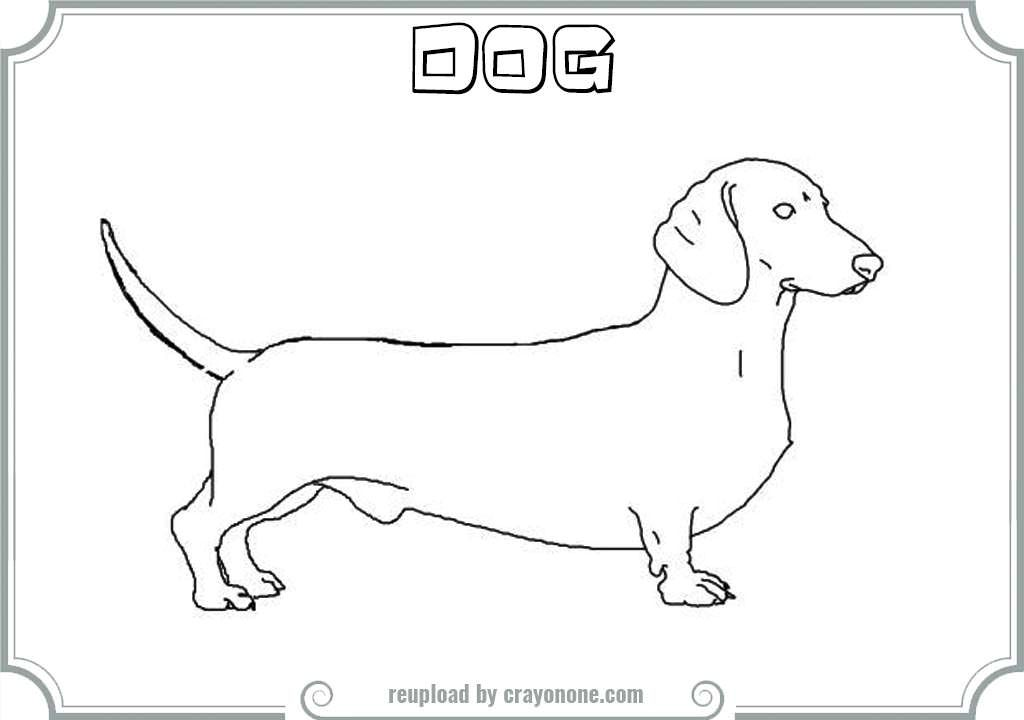 weenie dogs coloring pages - photo#18