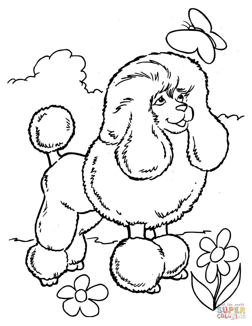 poodle dog coloring pages | Coloring Pages Of Poodles - Coloring Home