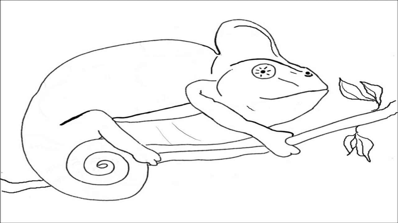 Chamelon Coloring, Chameleon Coloring Pages. Coloring Trend ...