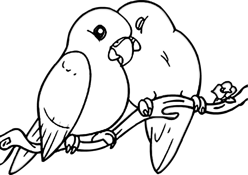 - Cute Birds Coloring Pages - Coloring Home