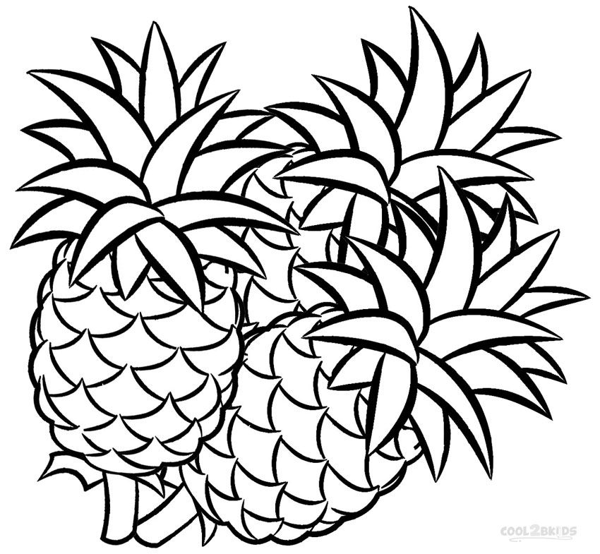 Pineapples Coloring Pages - Coloring Home