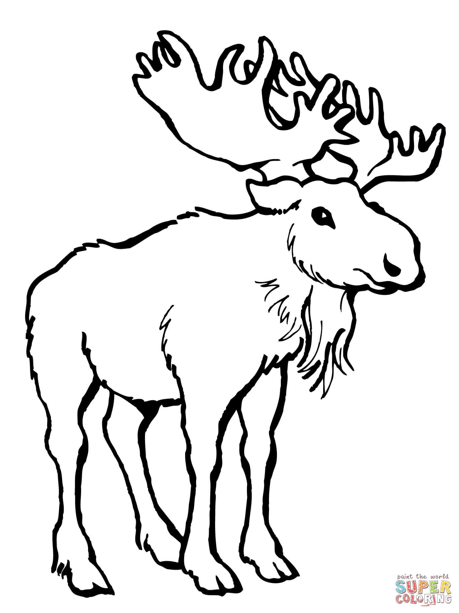 Alaska coloring page | Flag coloring pages, Alaska themed ... | 2000x1500