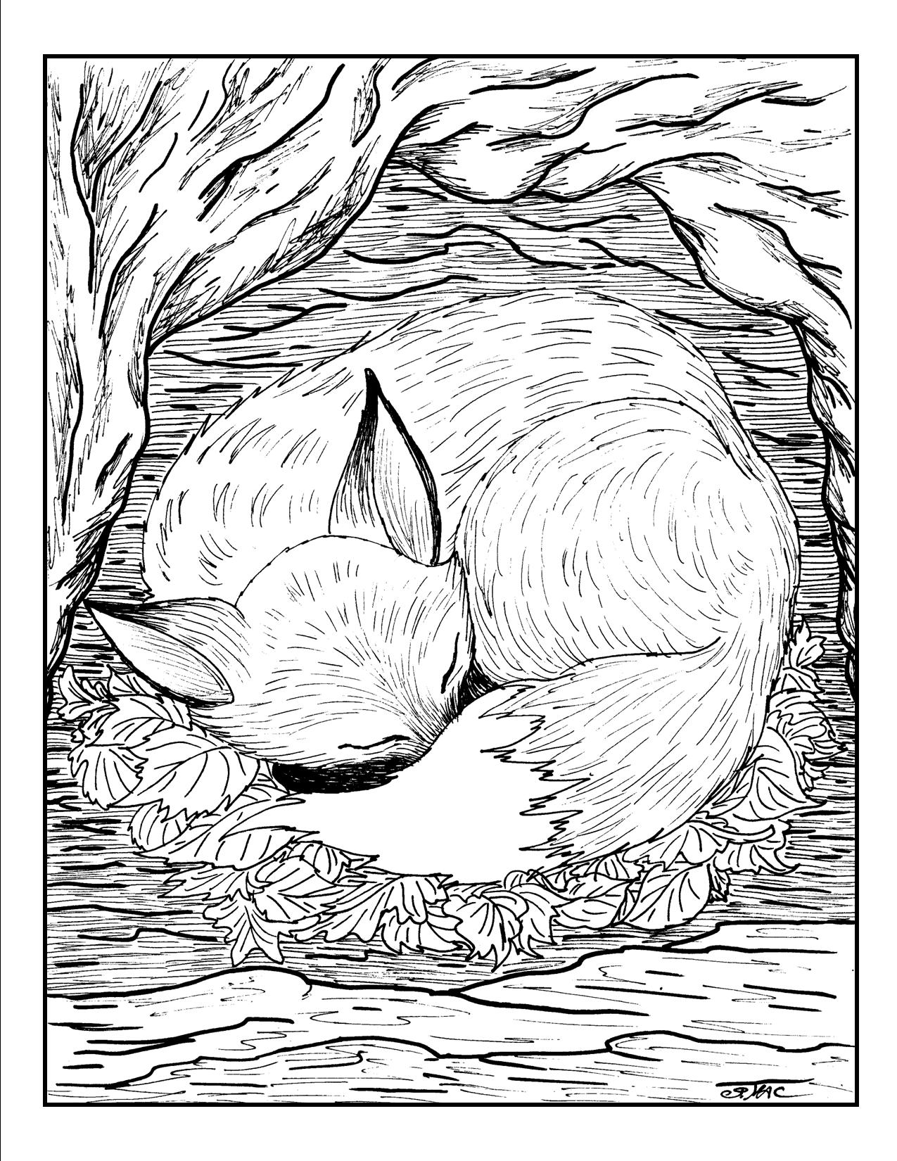 Rooster And Fox Coloring Pages Coloring Home