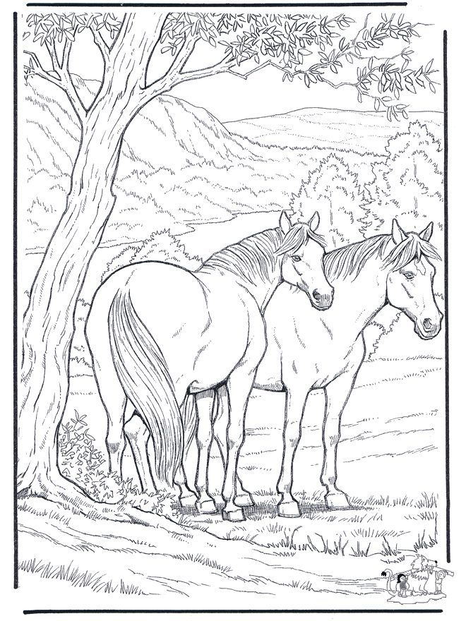 coloring pages of animals hard - photo#14