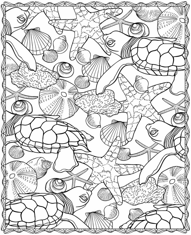 water coloring pages for adults - seashells coloring pages az coloring pages