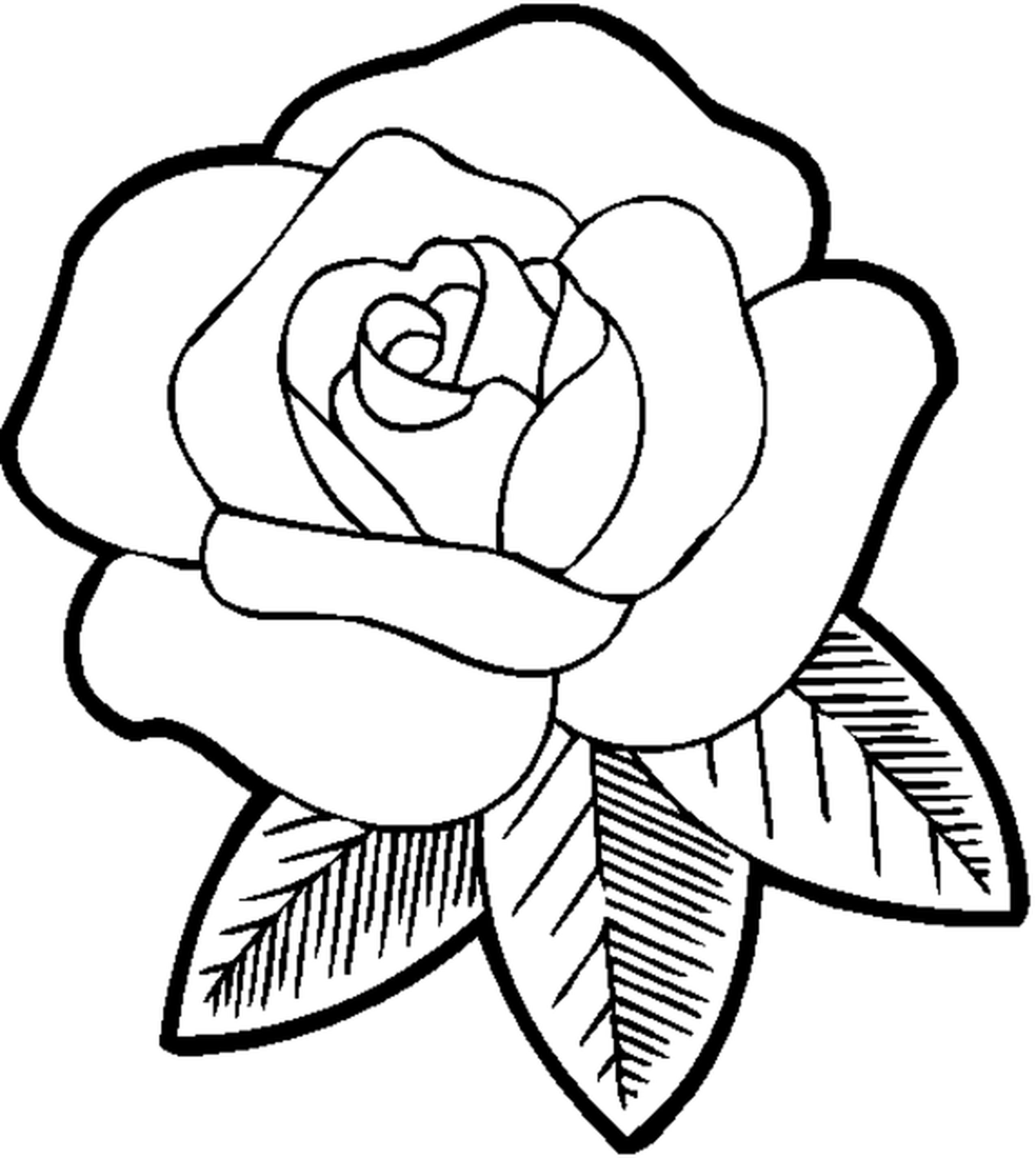 Flower Coloring Pages For Teens - Coloring Home