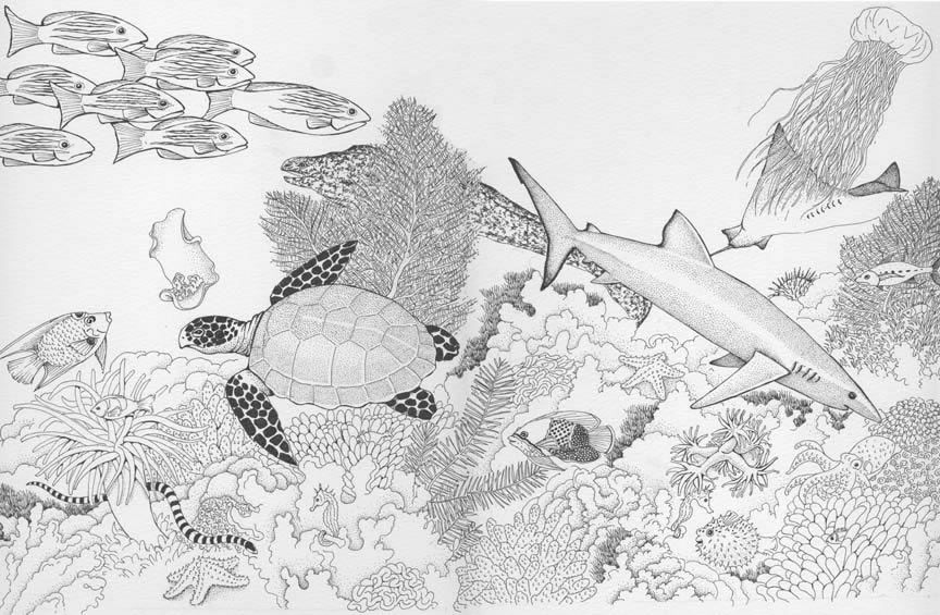 Desert Biome Coloring Pages - Coloring Page - Coloring Home