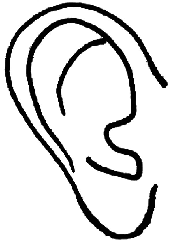 Ear free colouring pages for Ear coloring pages
