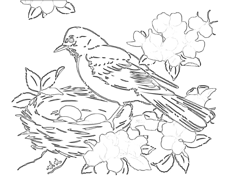 Robin Birds Nest Coloring Pages - Print Color Craft