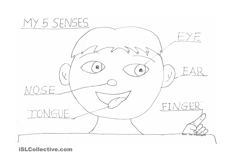 sample page five senses science emergent reader for young students – 5 Senses Worksheets Kindergarten
