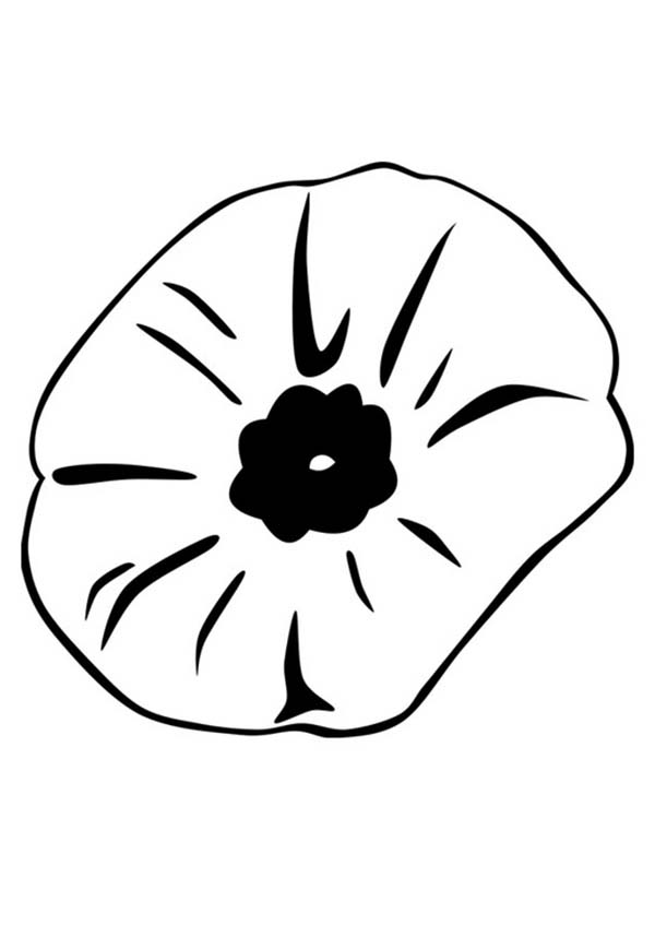 Coloring pages poppy flower coloring home for Poppy coloring page