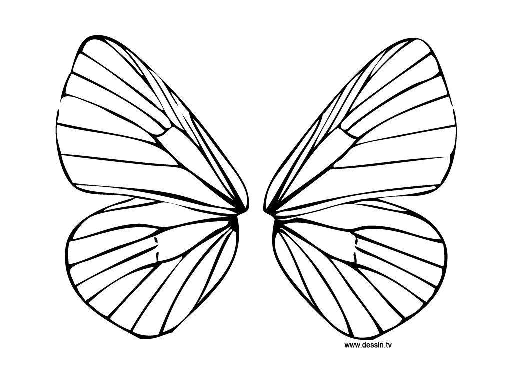 Butterfly wings coloring pages - Butterfly Wing Printable Coloring Pages Coloring Pages For All Ages