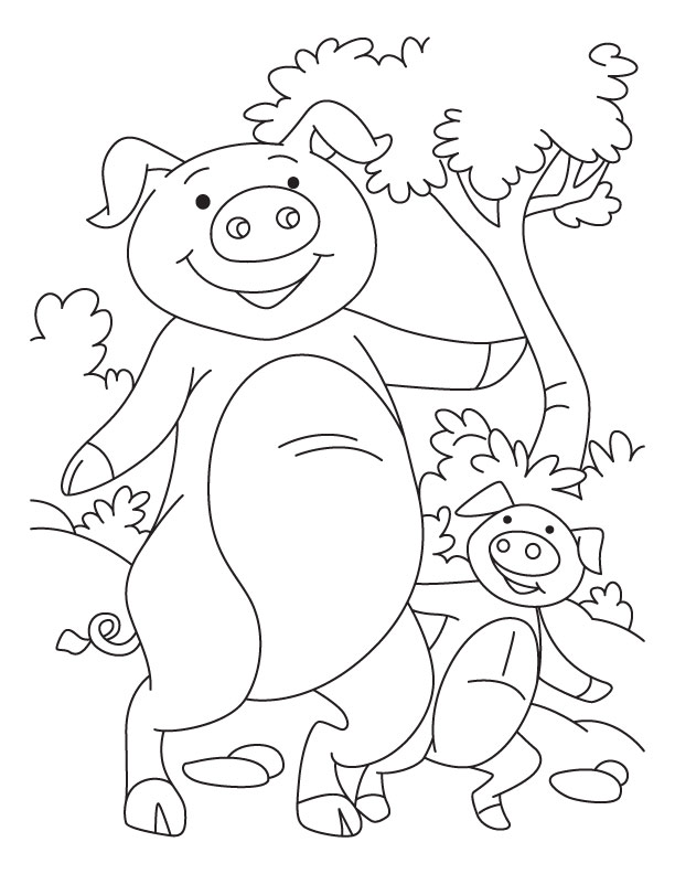 coloring pages baby pigs - photo#26
