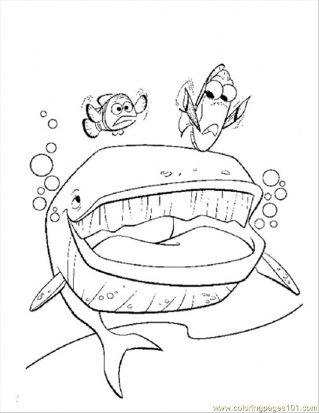 pinocchio whale coloring pages - photo#1