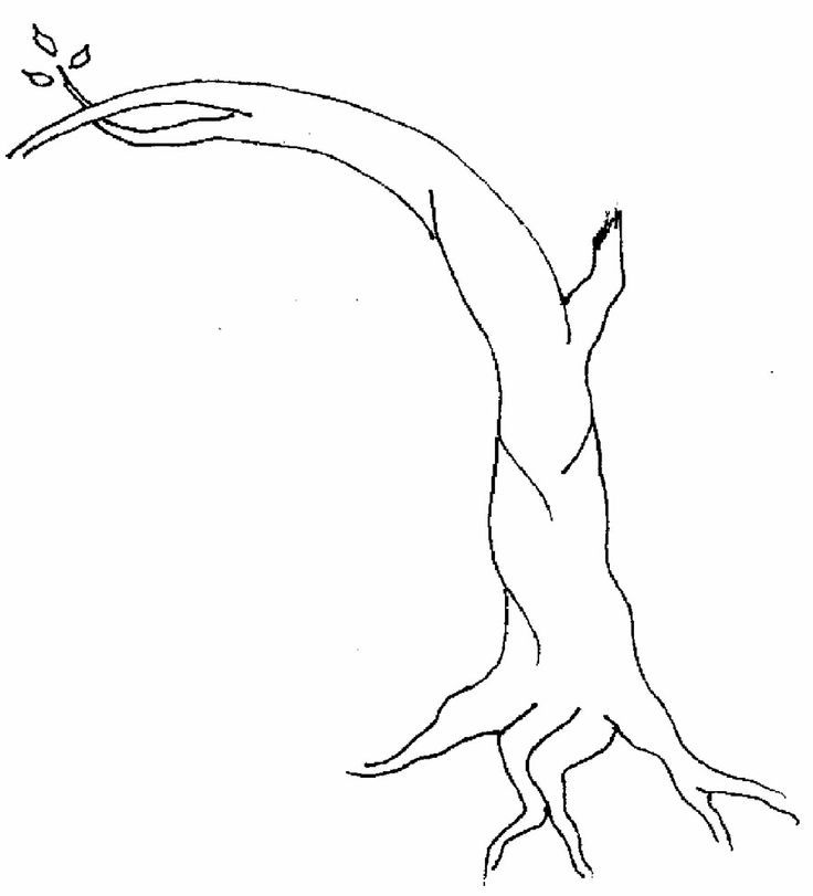 Printable Tree Without Leaves Coloring Pages Coloring Pages Of Trees Without Leaves