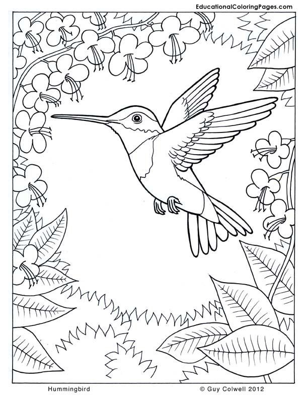 Therapy coloring pages coloring home for Therapeutic coloring pages for children