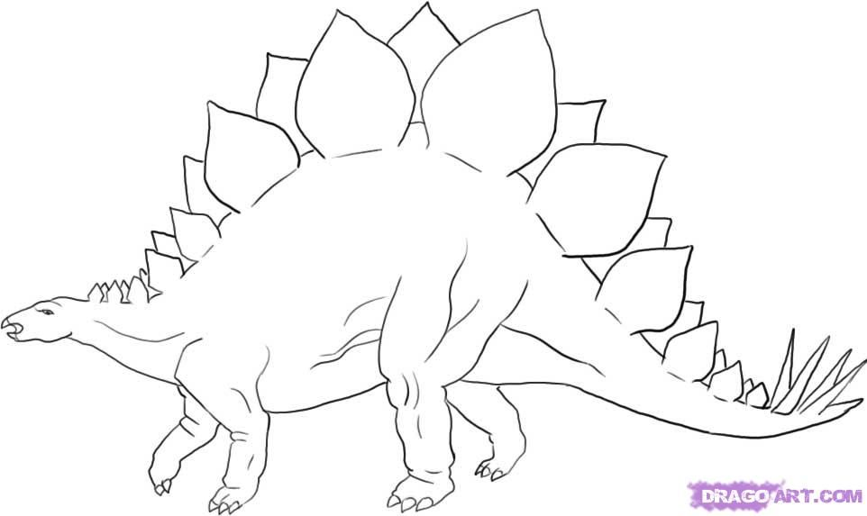 How to Draw a Stegosaurus, Dinosaur, Step by Step, Dinosaurs