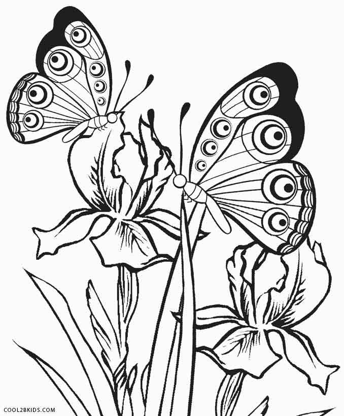 Printable Butterfly Coloring Pages For Kids Cool2bkids