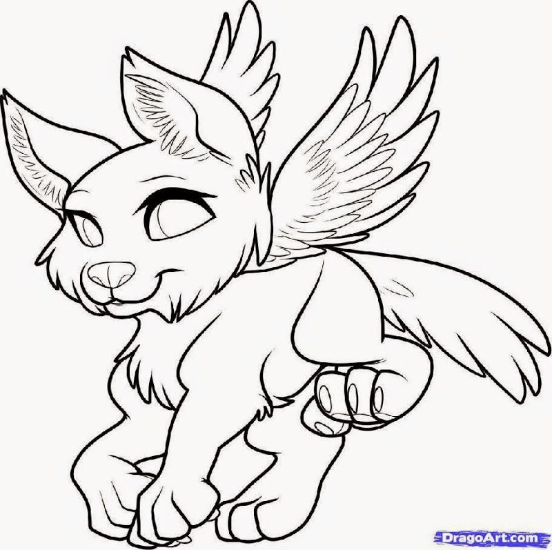 baby wolves coloring pages az coloring pages