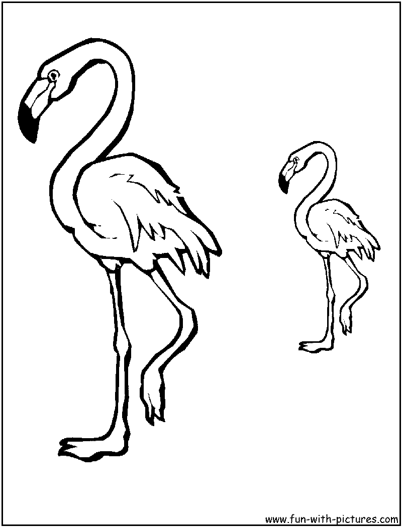 Flamingo with baby flamingo coloring page  Free Printable