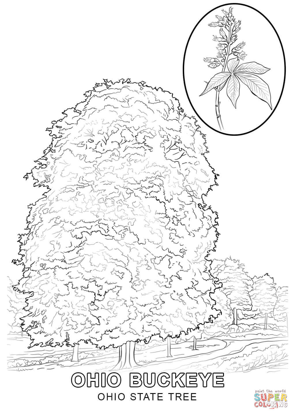 ohio coloring page coloring home