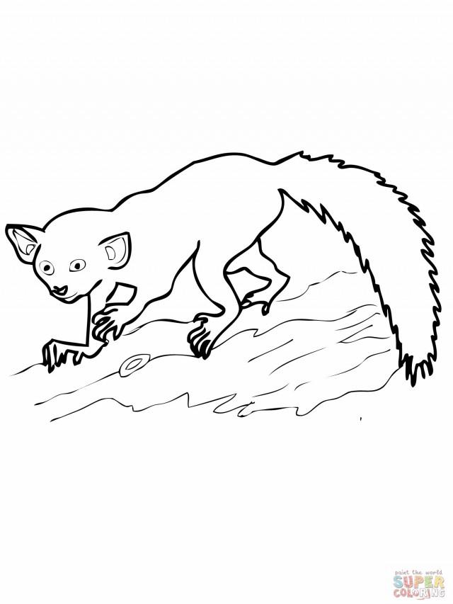 Lemur Coloring Page Az Coloring Pages Lemur Coloring Page