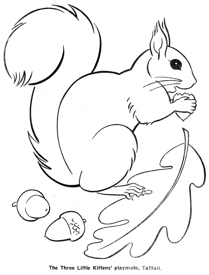 squirrel template az coloring pages