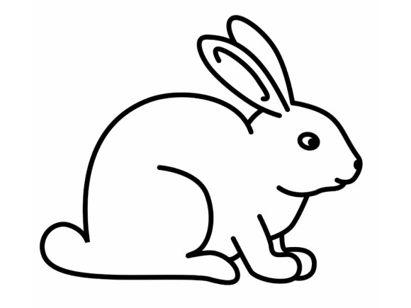 Coloring Pages Draw A Rabbit - Pipress.net