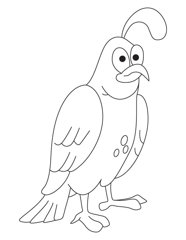 Quail Coloring Pages Coloring Page Coloring Home