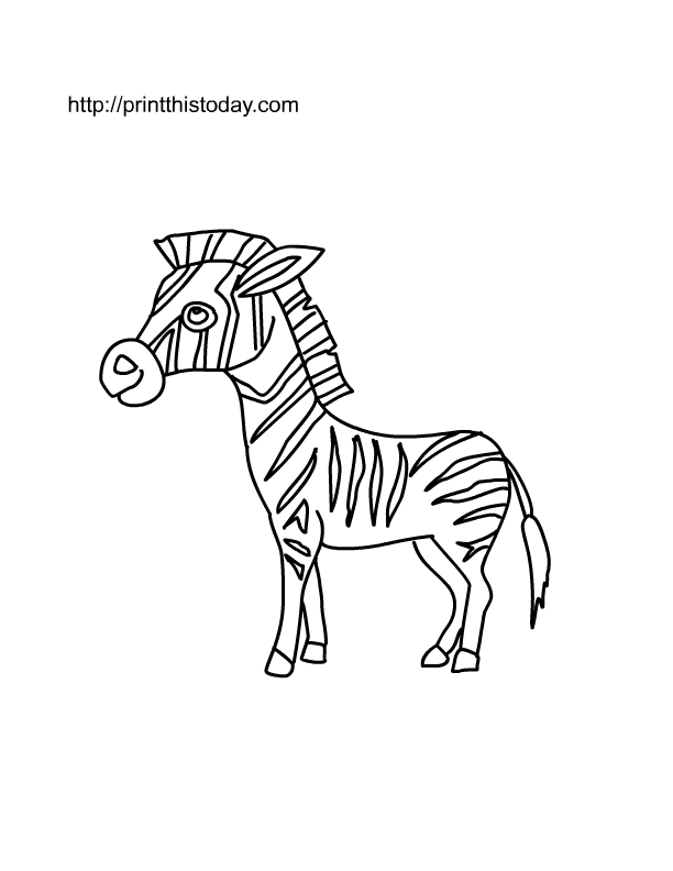 baby zebra coloring pages - photo#23