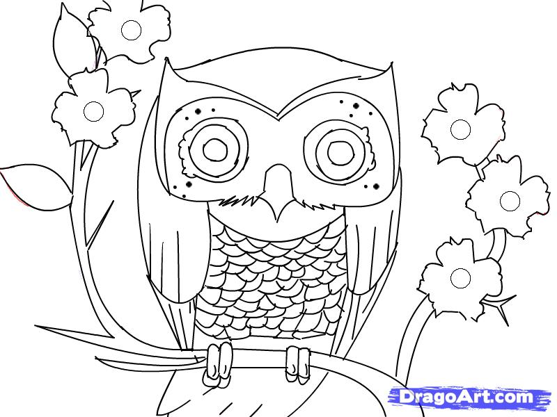 Owls pictures cartoons az coloring pages for Cartoon owl sketch