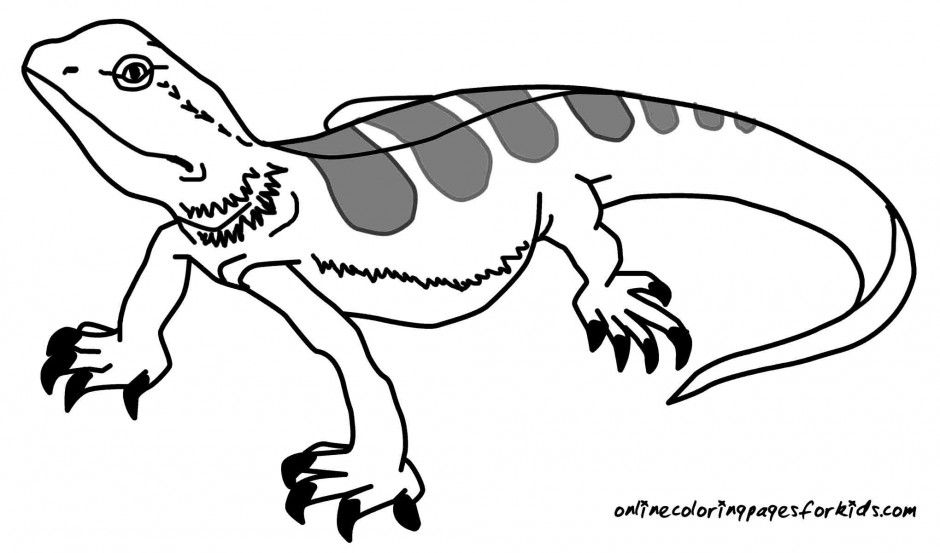 cartoon lizard coloring pages - photo#10