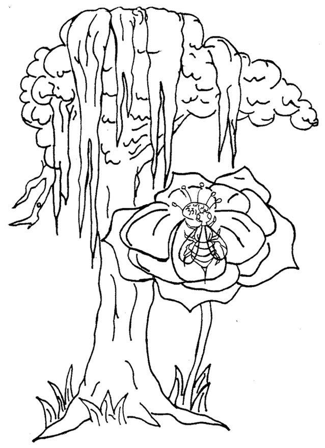 louisiana flag coloring pages - photo#17