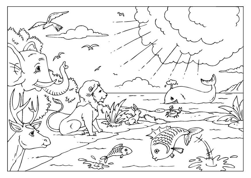Creation Coloring Pages - Coloring Home