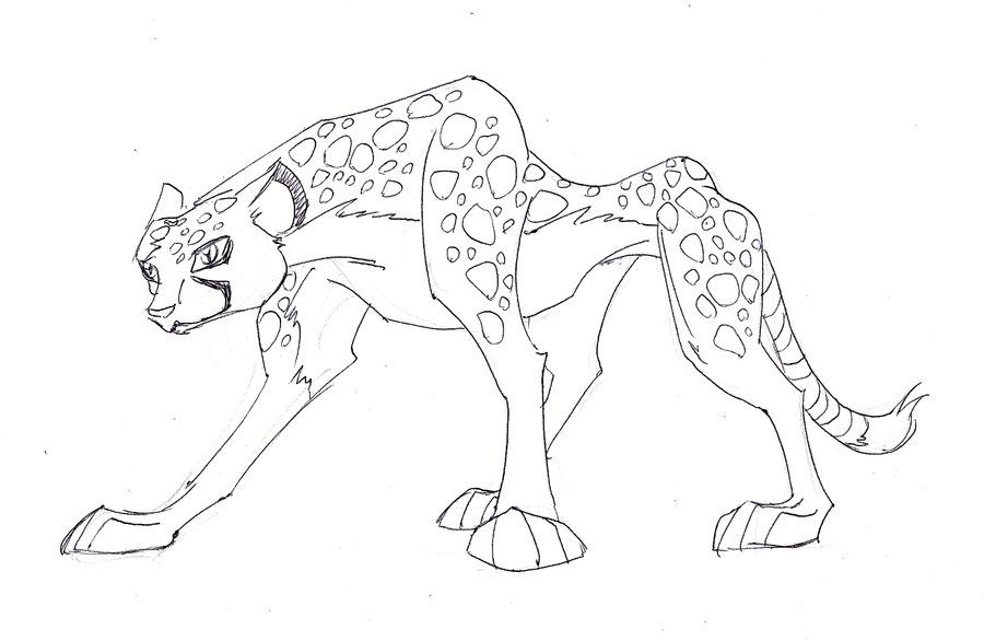 Cheetah drawings with color - photo#26