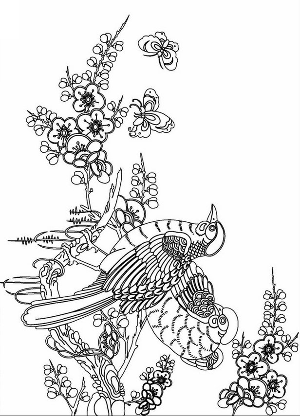 adult coloring pages free - photo#21