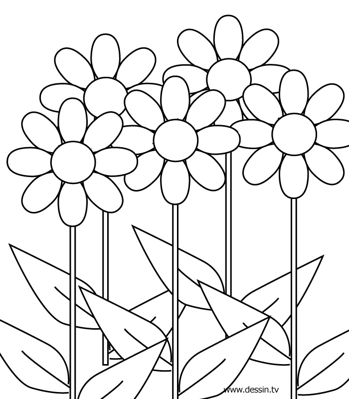Coloring Pages For Girls 10 And Up Az Coloring Pages Coloring Pages For 10 And Up
