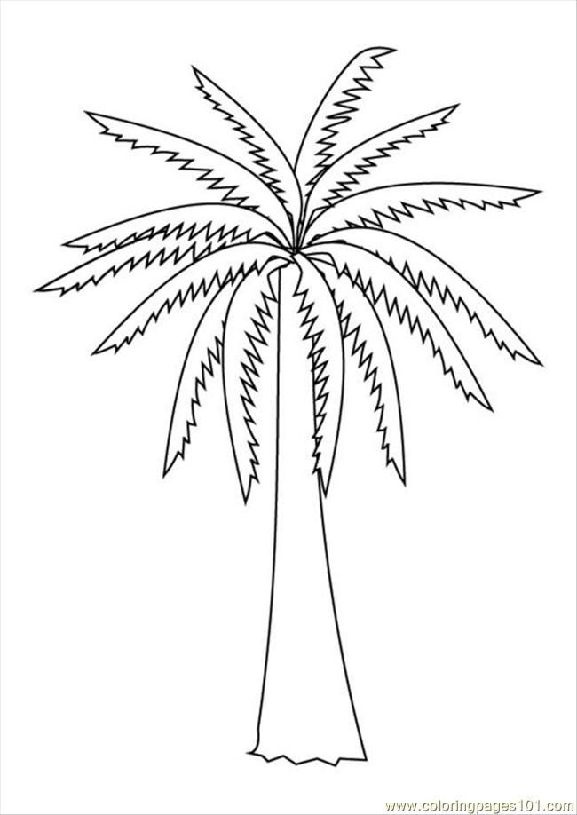 palm tree coloring pages for kids  az coloring pages, coloring